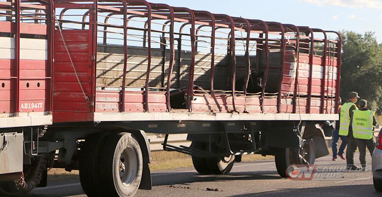 El camión jaula, impactado en su lateral izquierdo.