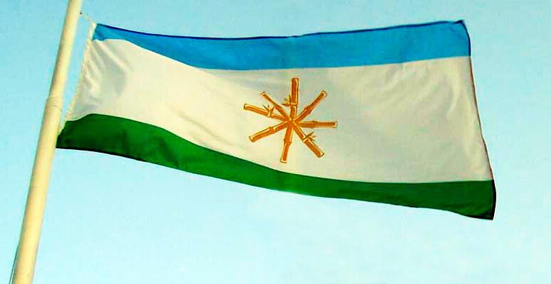 Bandera de Cañuelas creada en el 2007.